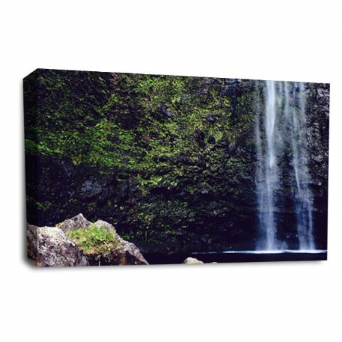 Waterfall Wall Art Picture Forest White Grey Black Print